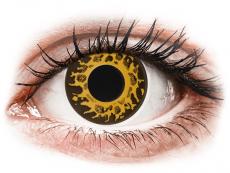 CRAZY LENS - Cheetah - plano (2 daily coloured lenses)