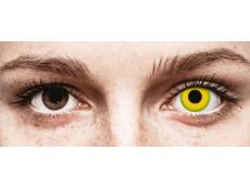 CRAZY LENS - Forest Children - plano (2 daily coloured lenses)