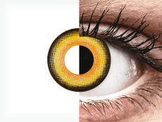 CRAZY LENS - Midnight Sun - plano (2 daily coloured lenses)